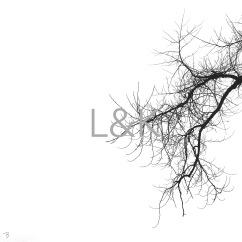 LK Web branch